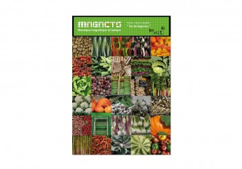 Magnetic mosaic - Vegetable Patchwork